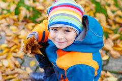 Happy cute little kid boy with autumn leaves playing in garden Royalty Free Stock Photo