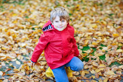 Happy cute little kid boy with autumn leaves playing in garden Royalty Free Stock Image