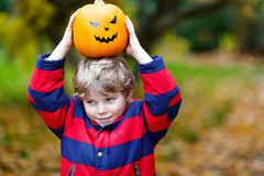 Happy cute little kid boy with halloween pumpkin lantern on autu. Happy cute little kid boy with halloween pumpkin lantern. Funny child in colorful clothes Stock Photos