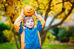 Happy cute little kid boy with halloween pumpkin lantern on autumn. Happy cute little kid boy with halloween pumpkin lantern. Funny child in colorful clothes Royalty Free Stock Images