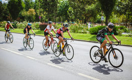 Happy cyclists competing Royalty Free Stock Images