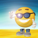 Smiley on the beach Royalty Free Stock Photography