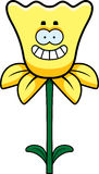 Happy Daffodil Stock Image