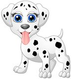 Happy dalmatian cartoon isolated on white background Stock Images