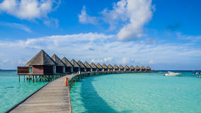 Happy days in Maldive Royalty Free Stock Images