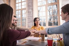 Happy delighted people being a team royalty free stock image