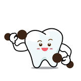 Happy  Dental Smile Tooth Mascot Cartoon Character isolated on w Stock Photos