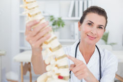 Happy doctor showing anatomical spine Stock Photos