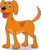 Happy dog cartoon Royalty Free Stock Images