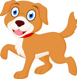 Happy dog cartoon Royalty Free Stock Images