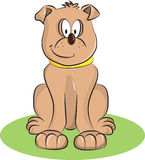 Happy Dog. Funny happy dog running for take its food Royalty Free Stock Photo