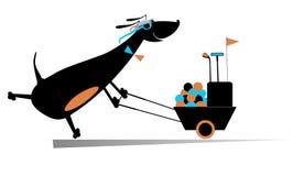 Happy dog golfer Stock Photo