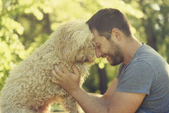 Happy dog and his owner. Man with his dog hugging and playing outdoor in the park. Young owner having fun with his pet in nature Stock Images