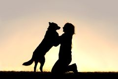 Happy Dog Jumping up to Greet Woman Silhouette. The silhouette of a happy German Shepherd mix dog is jumping up to greet a young woman, his master,  in front of Stock Image