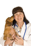 Happy dog Licking Female Veterinarian Royalty Free Stock Photos