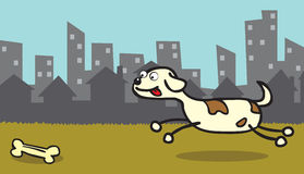 Happy dog like bone. A happy dog approaching a bone on a grass in the middle of a city Royalty Free Stock Photos