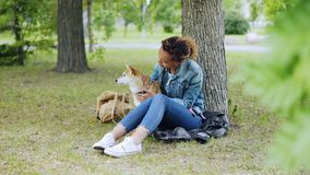 Happy dog owner attractive African American girl is stroking her purebred dog and talking to it sitting on lawn in park stock footage