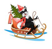 The dog is racing on a sledge with Christmas tree and gifts. Happy dog rides in a sleigh with Christmas tree and gifts Royalty Free Stock Image