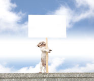 Happy dog showing blank billboard Stock Photography