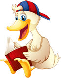 A happy duck reading a book Stock Photo