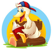 A happy duck reading Stock Photography