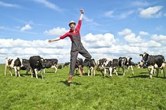 Happy dutch farmer with his cows. In the countryside from the Netherlands Royalty Free Stock Photos