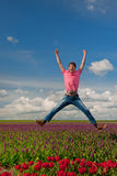 Happy Dutch tulip fields Stock Images