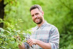 Happy earth day. Eco living. farming and agriculture cultivation. Garden tools. Eco farm worker. Harvest. muscular ranch. Man care plants. sexy farmer cut stock photo