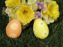 Happy easter. Easter eggs on grass with blossoms Royalty Free Stock Photo