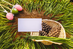 Happy easter artificial eags witht fir cone wooden backgroung Royalty Free Stock Photos