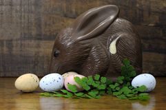 Happy Easter Australian style chocolate Bilby on wood background Royalty Free Stock Image