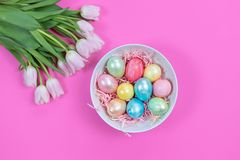 Bright colorful Easter eggs and fresh tulips on pink background. Happy Easter background with colored eggs and tulips on pink background stock images