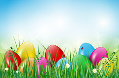 Happy Easter background with easter eggs in grass. Easter background with easter eggs, grass, ladybug and flowers. Vector illustration Stock Photos