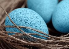Happy Easter. Background with natural eggs in the nest. Beautiful holiday card Stock Images
