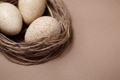 Happy Easter. Background with natural eggs in the nest. Beautiful holiday card Royalty Free Stock Photo