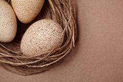 Happy Easter. Background with natural eggs in the nest. Beautiful holiday card Stock Image