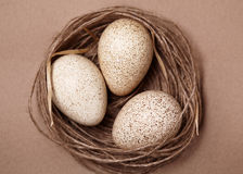 Happy Easter. Background with natural eggs in the nest Royalty Free Stock Images