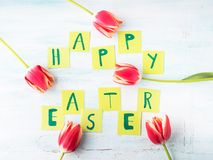 Happy Easter background tulips flowers hand written letters. Green pastel backdrop spring greeting card Stock Photography
