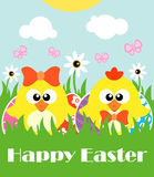 Happy Easter background with two funny chickens Stock Photography