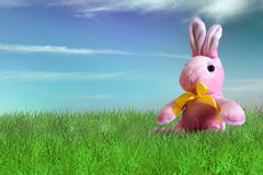 Happy Easter on backyard. Pink bunny plush on grass on backyard - Happy Easter Stock Photo