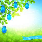 Happy Easter banner with blue eggs and spring background Royalty Free Stock Image