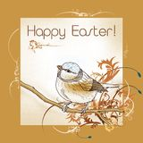 Happy easter bird Stock Photo