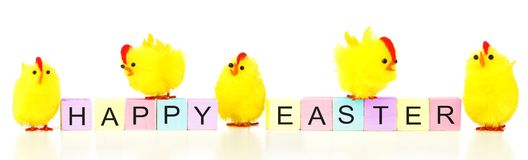 Happy Easter blocks with spring chicks Stock Images