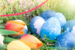 Happy easter, blue organic easter eggs, easter holiday decorations, easter concept backgrounds with copy space Stock Image
