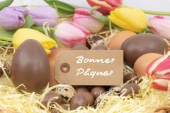 Happy easter Bonnes Pâques is Happy Easter writing in french on a label, easter celebration with chocolate eggs and pastel tulip royalty free stock photos