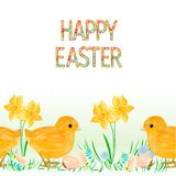 Happy easter border seamless background chicks with easter eggs and daffodil vector Illustration for use in interior design, artwo. Rk, dishes, clothing Stock Photography