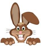 Happy Easter Bunny. Creative Animal Design Stock Photo