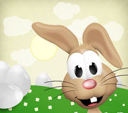 Happy Easter Bunny. 3d graphic illustration design Royalty Free Stock Photos