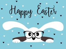 Happy Easter bunny with glasses. Heart background. Happy Easter bunny with glasses on heart patterned background. Isolated on white Stock Photos