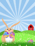 Happy Easter Bunny on Green Pasture Stock Photography